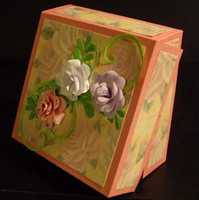 ScorPal  box.