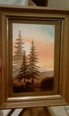 Misty pines at dusk
