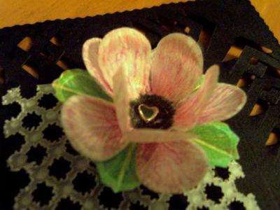 Parchment flower