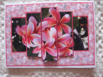 Frangipani Pyramid Card
