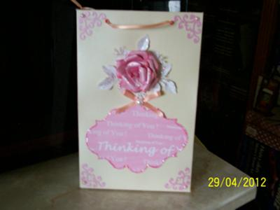 The Pink Collection Special Card Box